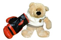 The toy a bear plays. Teddy bear in a red boxing glove Royalty Free Stock Photo