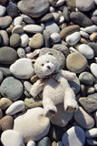 Toy  bear Stock Photo