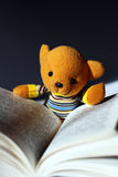 Toy bear reading Stock Photos