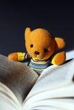 Toy bear reading. Book,very interesting Stock Photos