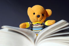 Toy bear reading Stock Photo