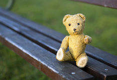 Toy bear sitting on a bench Stock Photography