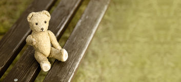 Toy bear website banner Royalty Free Stock Photo