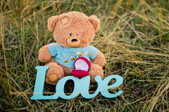 Toy bear, wedding ring and sign love on the grass Stock Photos