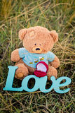 Toy bear, wedding ring and sign love on the grass Stock Photo