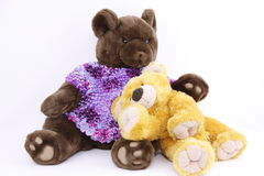 Toy bears. Photo of two toy bears a brown bear and a yellow playful  cub Royalty Free Stock Photos