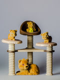 Toy bears on chairs Stock Image