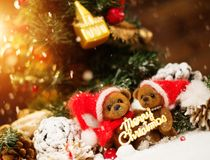 Toy bears in christmas interior Stock Images