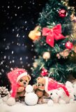 Toy bears in christmas interior Royalty Free Stock Photography