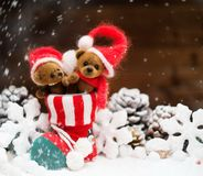 Toy bears in Christmas interior Stock Photo