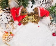 Toy bears in Christmas still life Stock Photo
