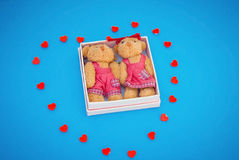 Toy bears in small gift box on blue background. Two toy bears in small gift box on blue background Stock Photo
