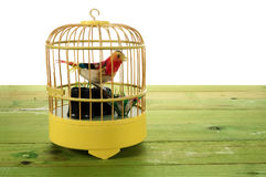 Toy Bird Cage Lizenzfreies Stockbild