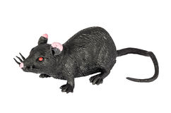Toy black rat Royalty Free Stock Images