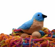 A toy blue and brown bird with a black beak is nesting on two brown eggs. On a bird nest made of multi colored yarn reflecting safe keeping of our children and royalty free stock image