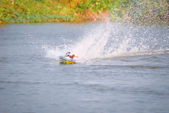 Toy boat. Toy motor sport on the water stock photo