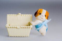 Toy box and doggie Stock Images