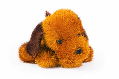 Toy brown doggie Stock Photography