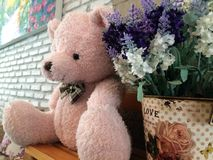 Toy brown teddy bear with flower Royalty Free Stock Images