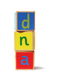 Toy building blocks – dna royalty free stock photos