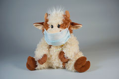 Toy bull in a medical mask with a thermometer on a gray backgrou Stock Photos
