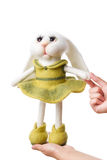 Toy bunny in a gift Royalty Free Stock Photos