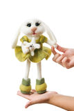 Toy bunny in a gift Stock Photo