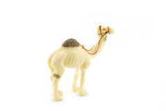 Toy camel Stock Image
