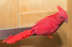 Toy Cardinal bird Stock Photography