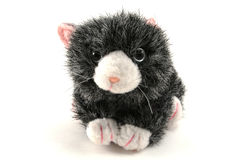 Toy Cat. Face of a cute fuzzy toy cat with pink ears Stock Photo
