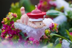 Toy cat lie prone on ice of flowers