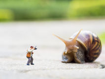 Toy charactor in using camera action. Pointing to big snail in nature outdoor Stock Photo