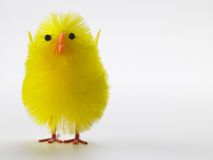Toy Chick For Easter Celebrations Stock Images