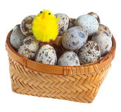 Toy chicken and eggs Royalty Free Stock Photos