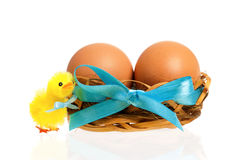 Toy chicken and nest with eggs stock photo