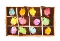 Toy chickens in wooden box Stock Photos