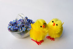 Toy chicks and forget-me-nots Stock Photo