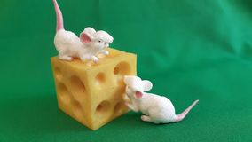 Toy for children on a green background. Two mouses with cheese. royalty free stock photo