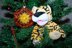 Toy on the Christmas tree. Ball toy on the Christmas tree Stock Image
