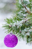 Toy on the Christmas tree Stock Images