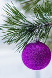 Toy on the Christmas tree Royalty Free Stock Images