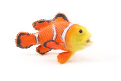 Toy Clown Fish. On a white background Royalty Free Stock Photo