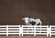 Toy cow standing behind fence. Close up image of toy cow standing behind a fence Stock Photography