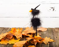 Toy crow in a cap and autumn leaves Royalty Free Stock Image