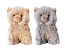 Two cute toy kitten beige and gray on white Stock Image