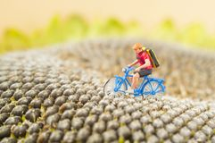 Toy cyclist ecotourism concept Royalty Free Stock Image