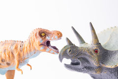 Toy dinosaur battle. Among tyrannosaurus and triceratops isolated Stock Photos