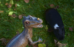 Toy dinosaur monster raptor fighting with guinea pig on the green grass Stock Images