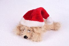 Toy dog ​​in a Christmas hat on an abstract background Stock Photography