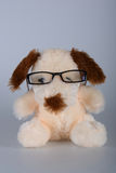 Toy dog ​​wearing glasses. Cute sitting beige plush puppy wearing glasses, clever, feel good soft, very beautiful Stock Photography